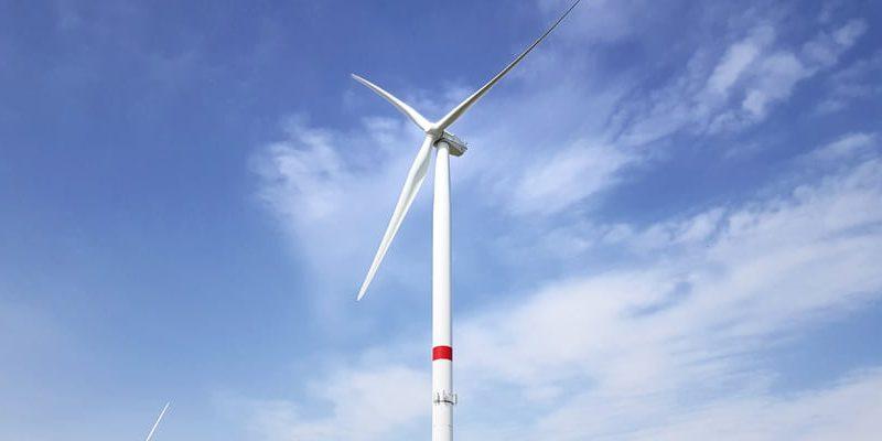 CO2 neutrale Website