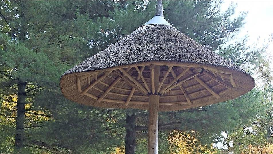 ein sonnenschirm mit tradition der parasol im cottbuser branitzer park sonnenschirm blog von. Black Bedroom Furniture Sets. Home Design Ideas
