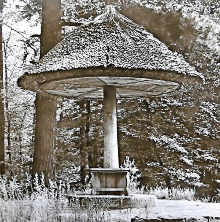 parasol-cottbus